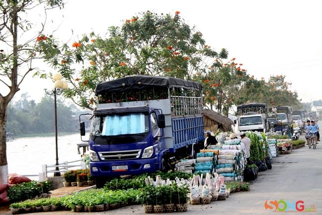 Các xe tải đang đậu dài bên bờ sông để ăn hàng hoa.