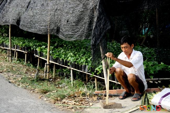 Nhịp sống hàng ngày của làng hoa có thể thấy qua công việc quen thuộc này: chẻ tre, làm cọc, cây trụ, bện giỏ cho các chậu hoa.